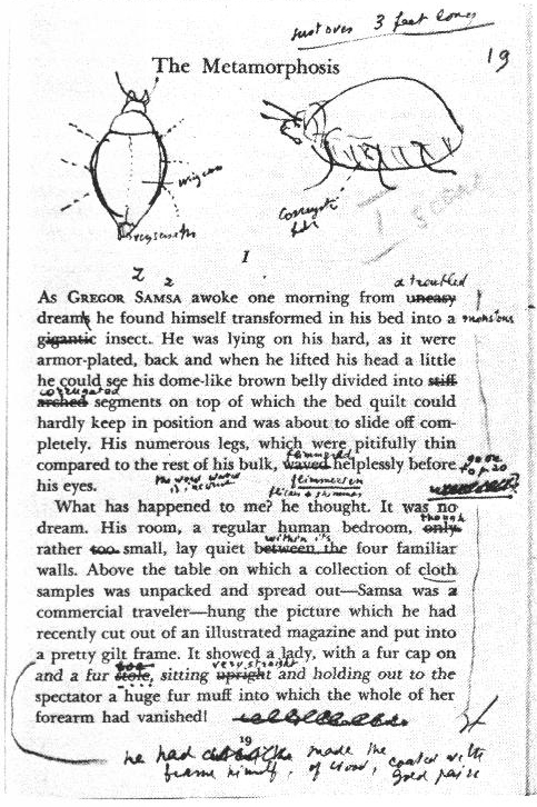 Nabokov on Kafka's Metamorphosis - Kinney Brothers Publishing