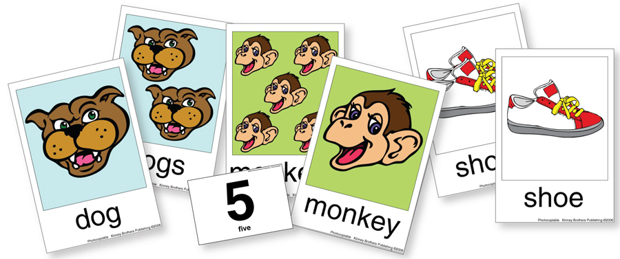 Plural Flash Cards 2 Kinney Brothers Publishing